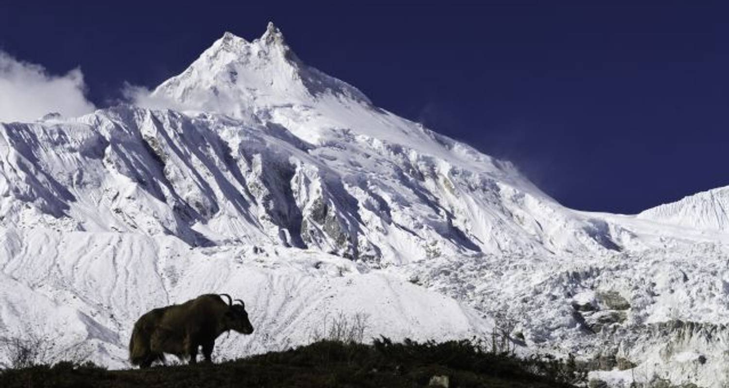Manaslu Circuit Trek - Adventure Himalayan Travels
