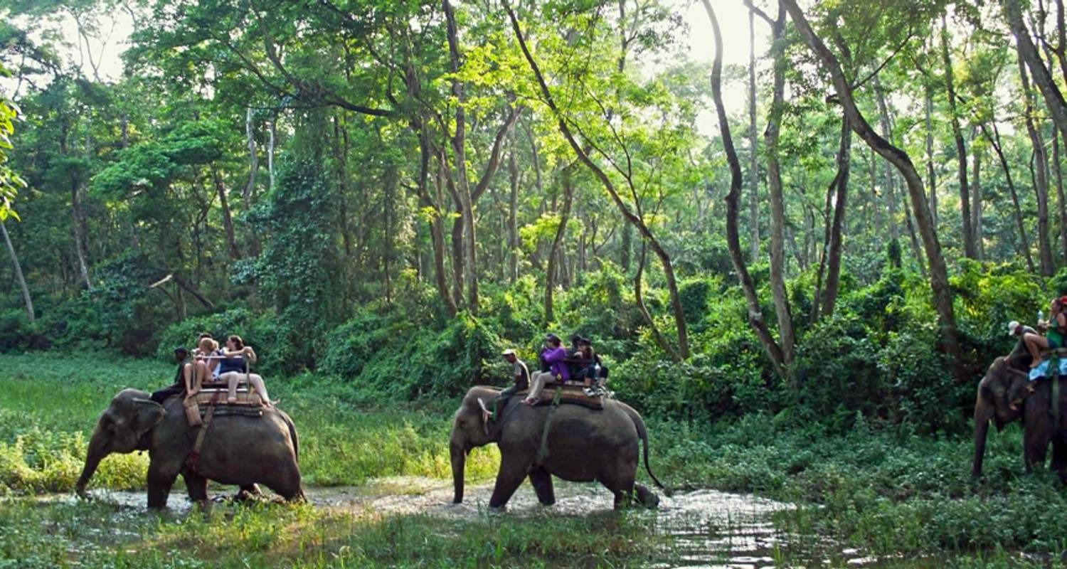 chitwan jungle safari package tour 2 nights 3 days by himalayan adventure treks tours with 2