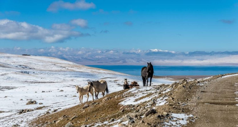 Kyrgyz & Tajik Explorer