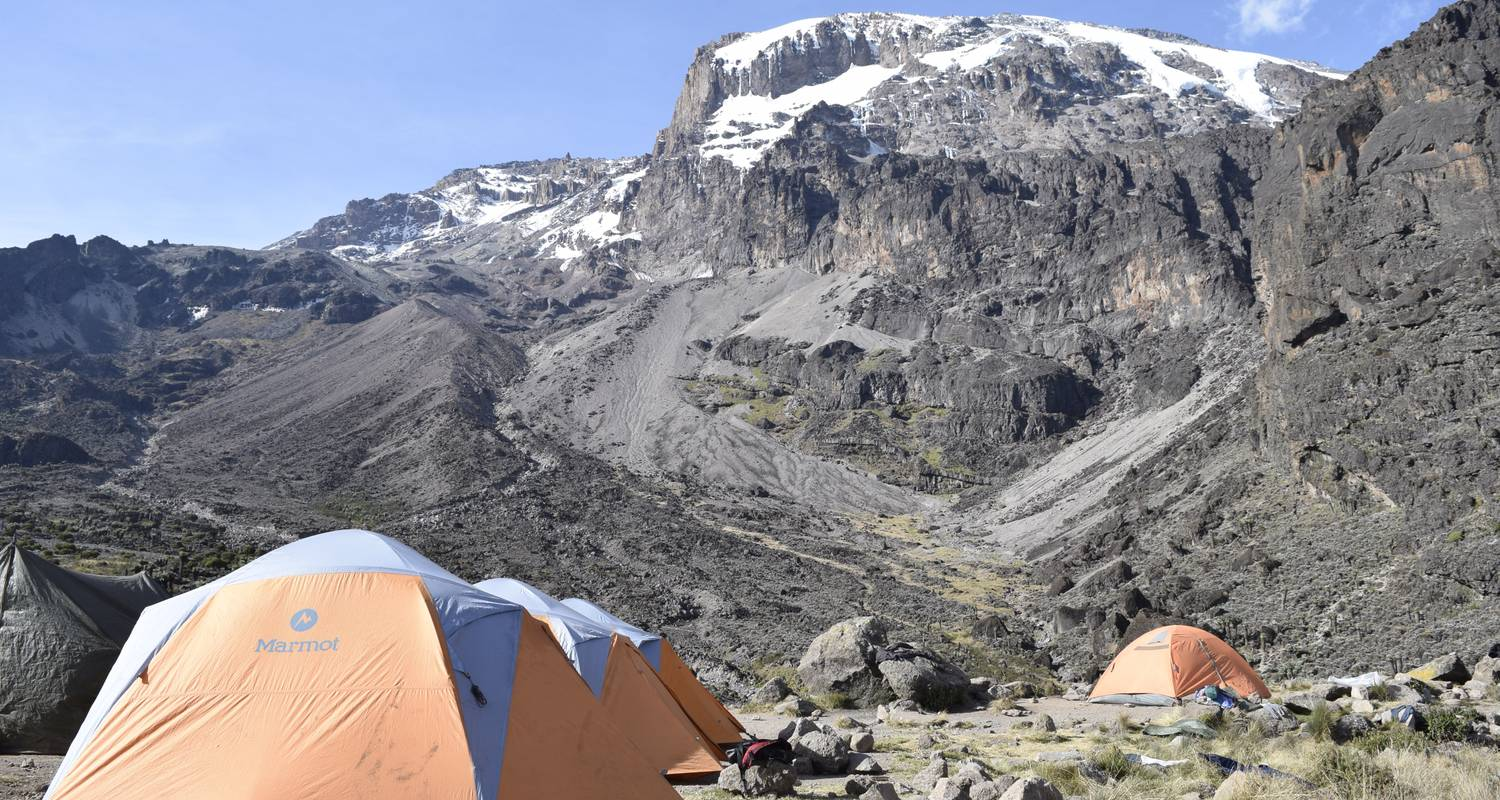 Machame Route 6 Days 5 Nights/Kilimanjaro Climb  - Migration Venture Africa