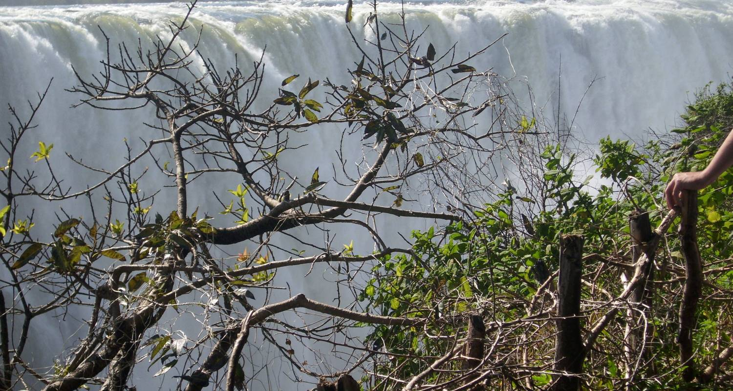Victoria Falls and Chobe - Afro Honeyguide Adventures