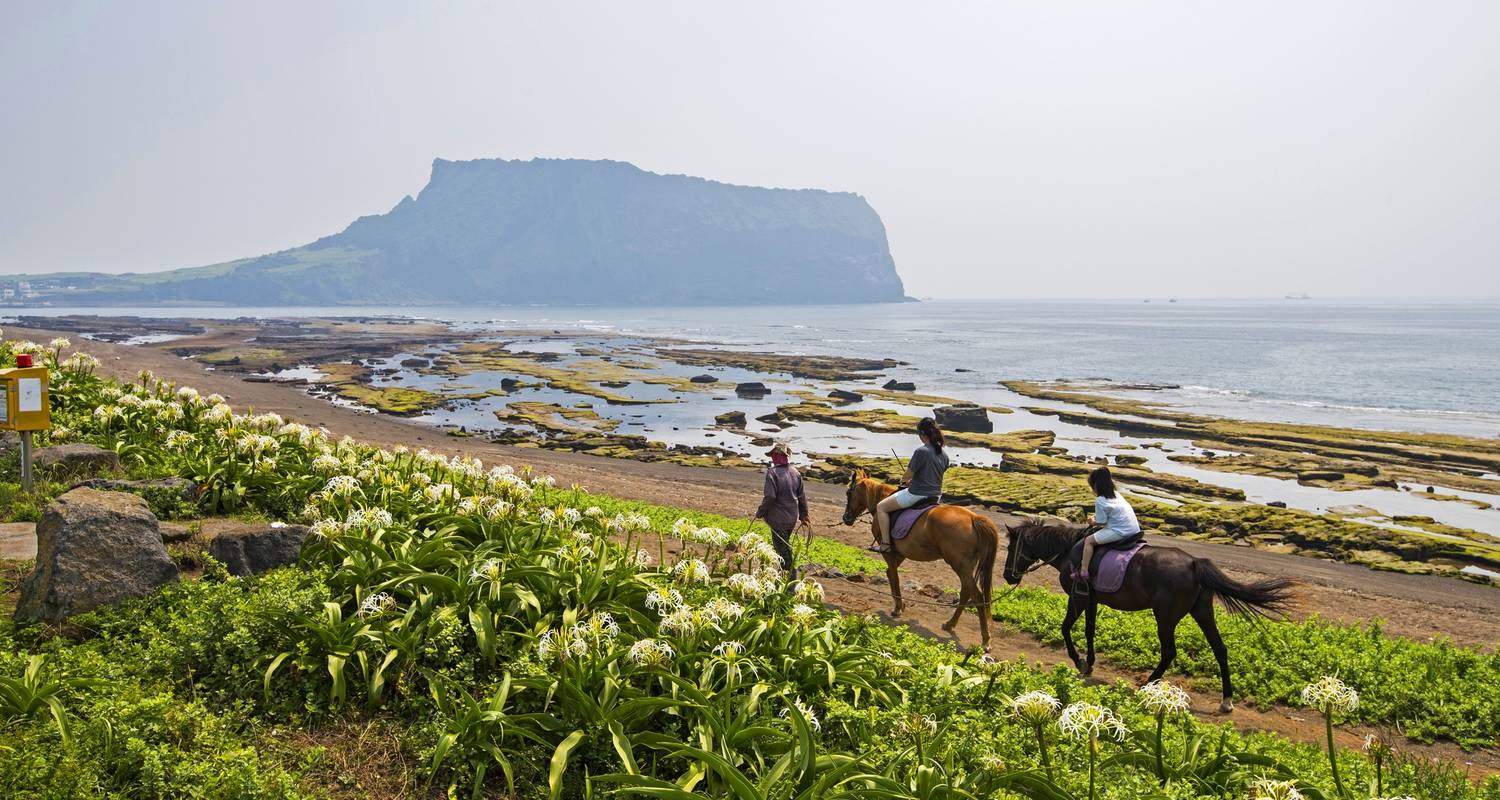 Discover Jeju Island - 3 Days (Airport Service Included) - Hanatour USA, Inc.
