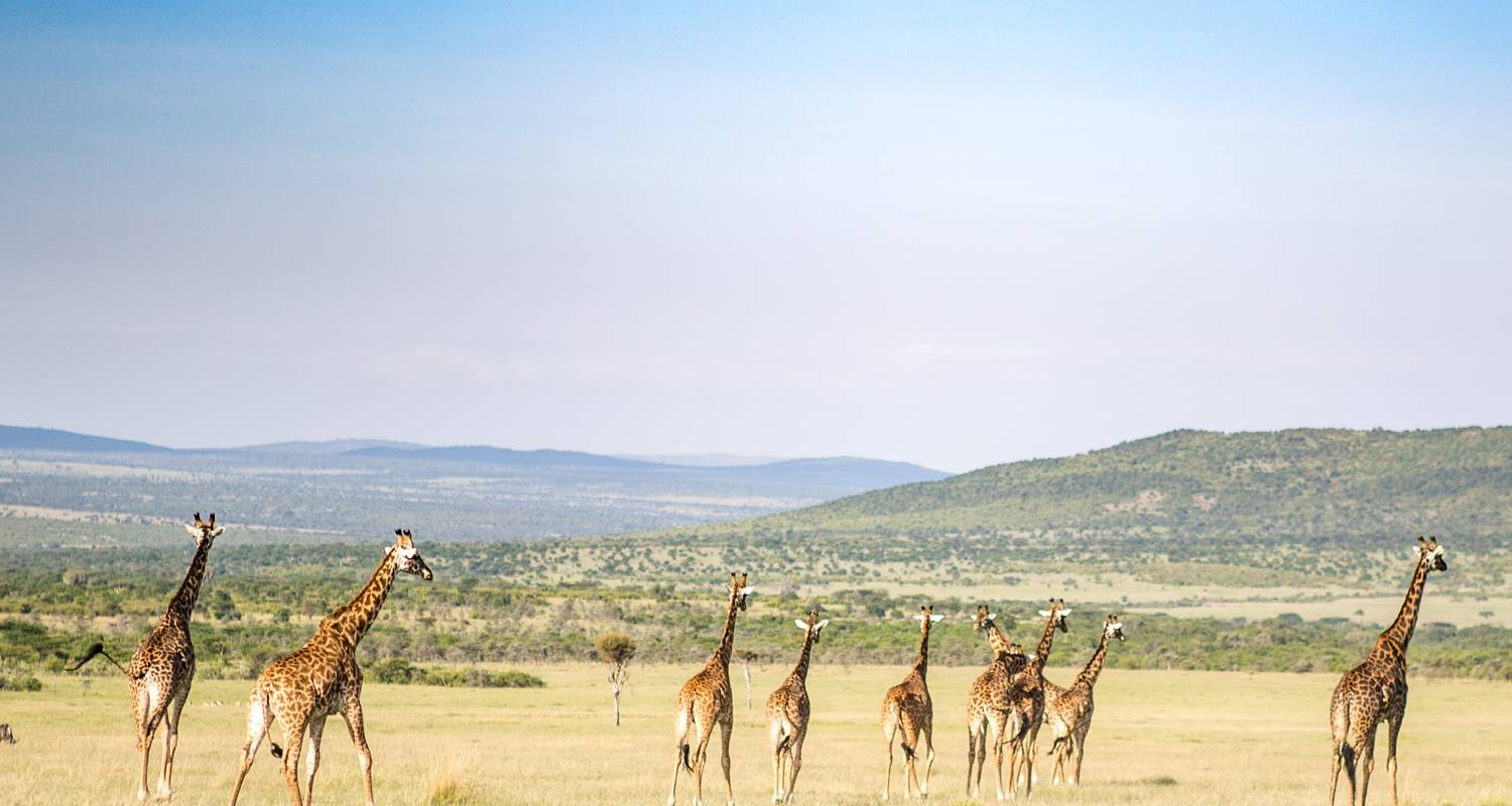 10 Days  Kenya Exciting Lodge Safari  - Exciting Africa Holidays
