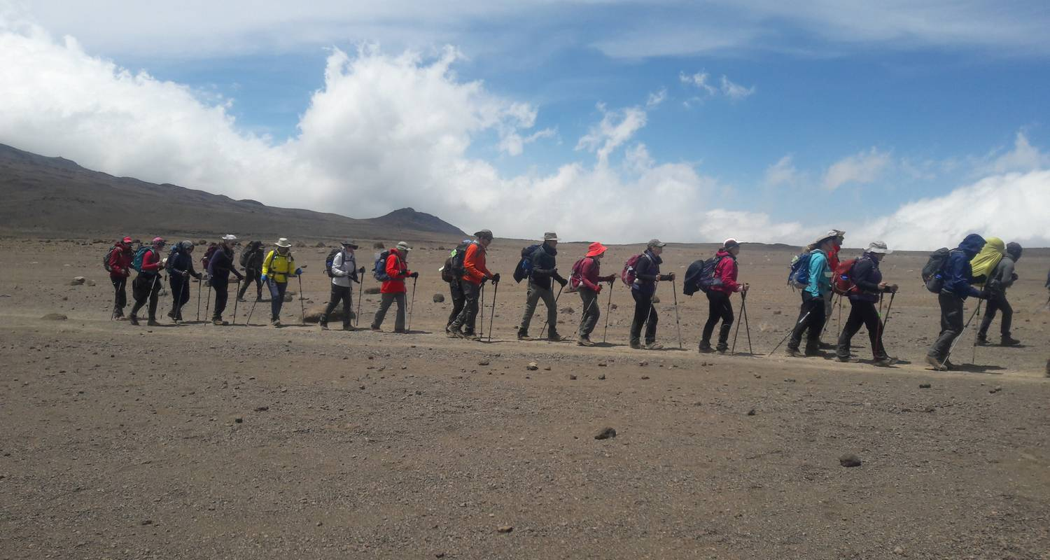 Lemosho 9-Day Route - Zara Tours (Zara Tanzania Adventures)
