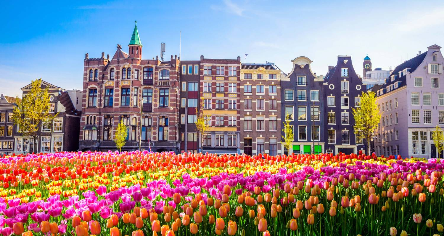 Tulip Time in Holland & Belgium with 1 Night in Amsterdam - Avalon Waterways