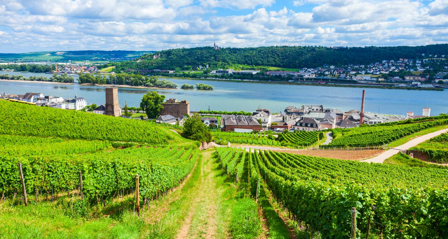 Captivating Rhine (Wine Cruise) (Wine Cruise) 2020 - AmaWaterways