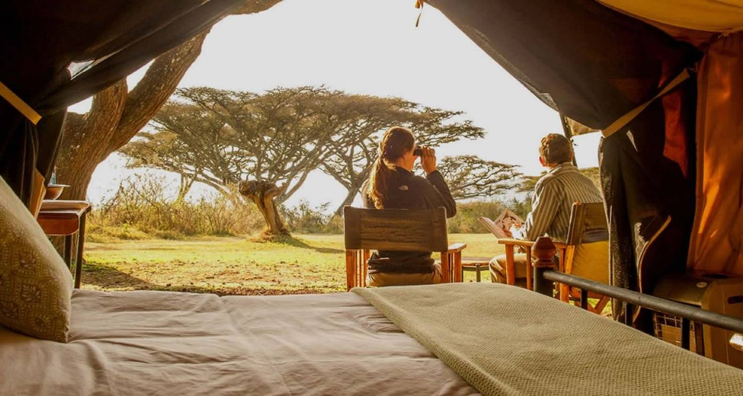 7 Days Tanzania Tented Lodge Safari - Unique Jungle Tours