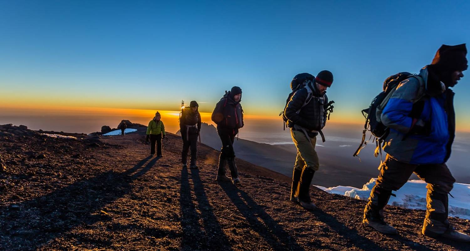 Kilimanjaro Climb, 8-Days Lemosho Route - Unique Jungle Tours