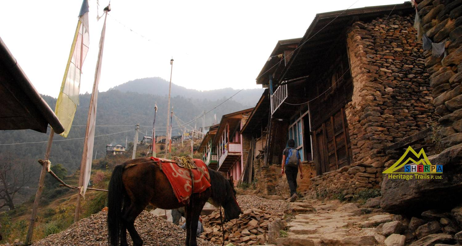 Langtang Valley & Tamang Heritage Trail - Sherpa Heritage Trails
