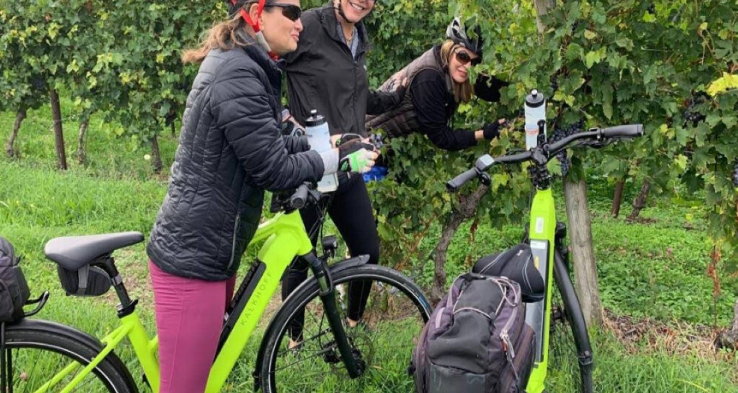 Pedaling Lake Garda and the Veneto - Guided Tour - Cycle Europe