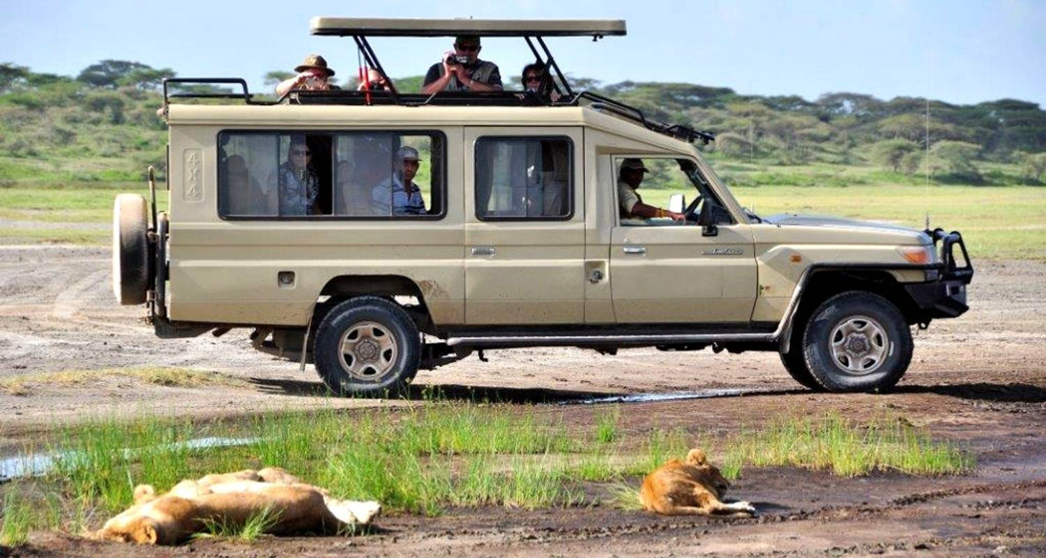 5 Days Ruaha Mikumi Adventure - Zepisa African Safaris