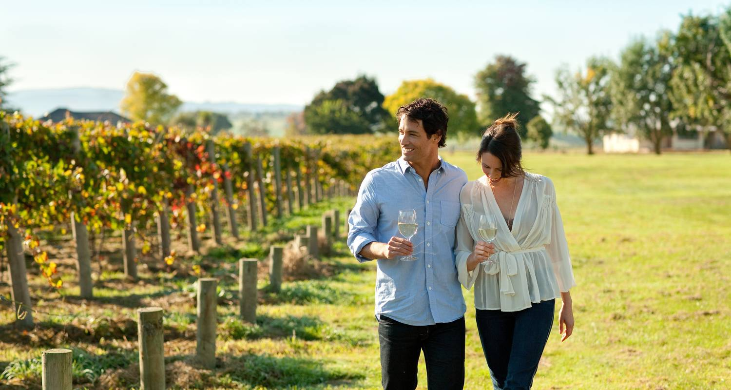 Hunter Valley Winery Tour 1 DAY - Wildlife Tours Australia