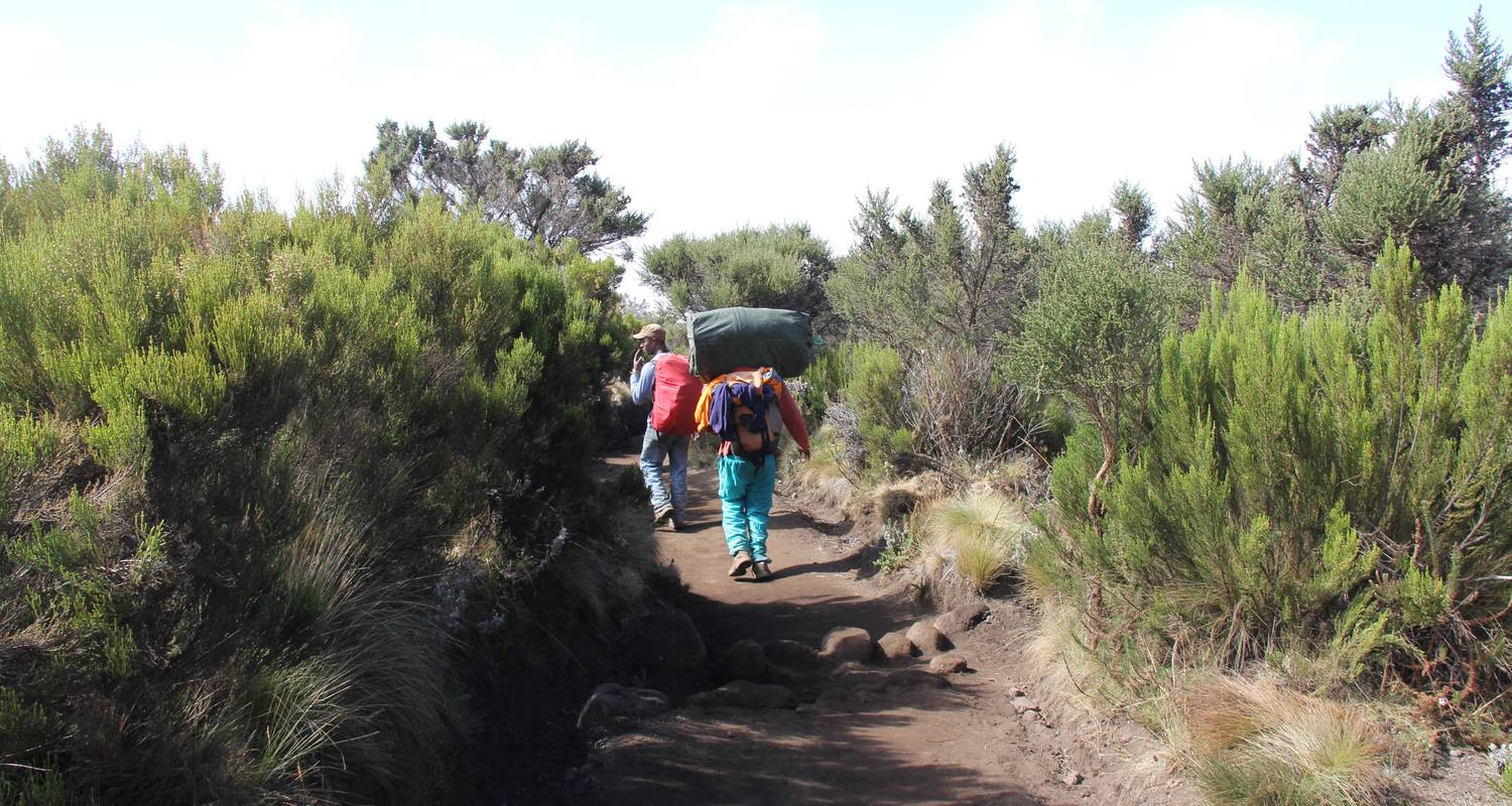 Climb Kilimanjaro: Machame Route 7 Days Adventure - World Adventure Tour