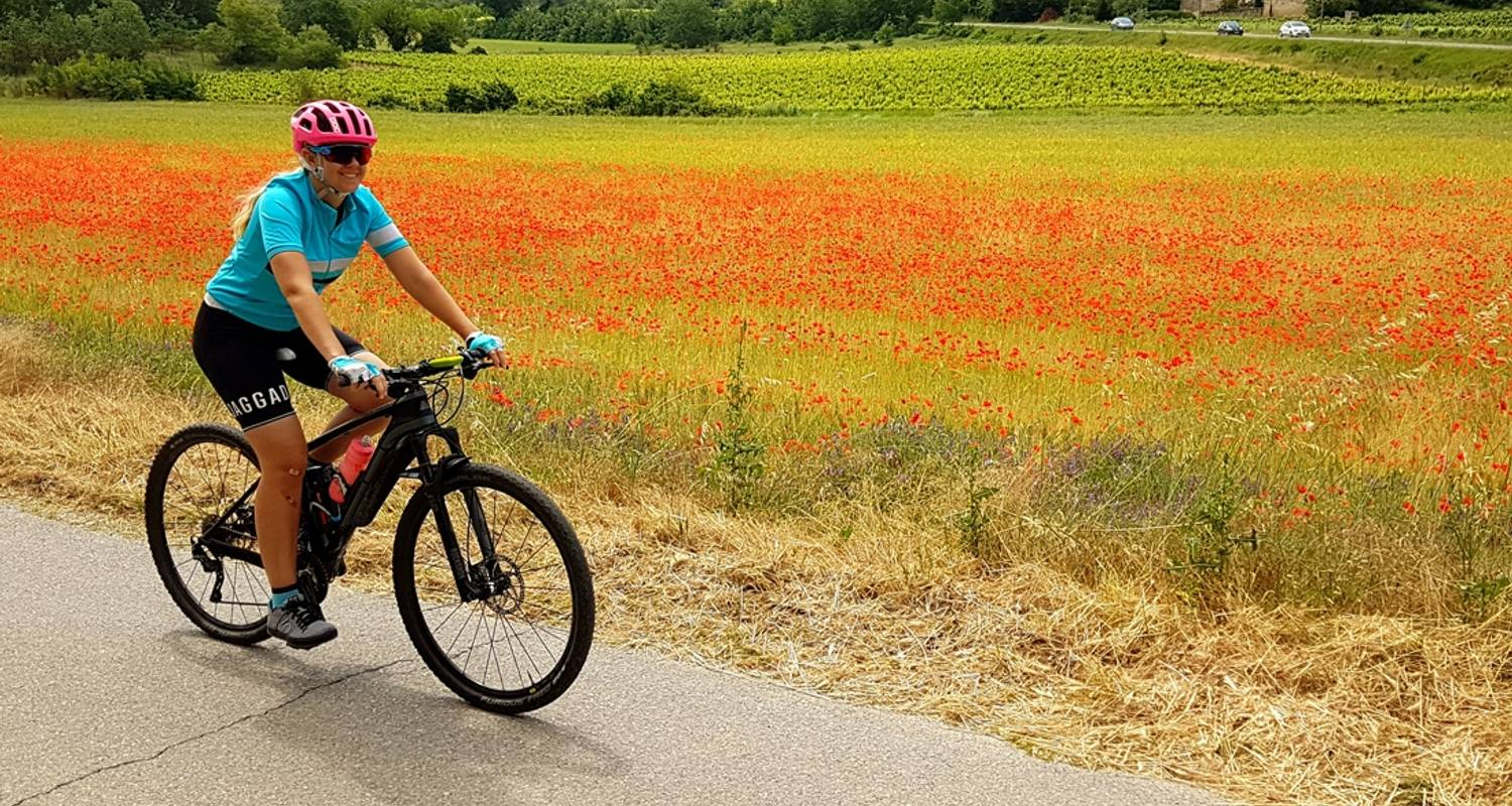 Cycle the Loire Valley - Intrepid Travel