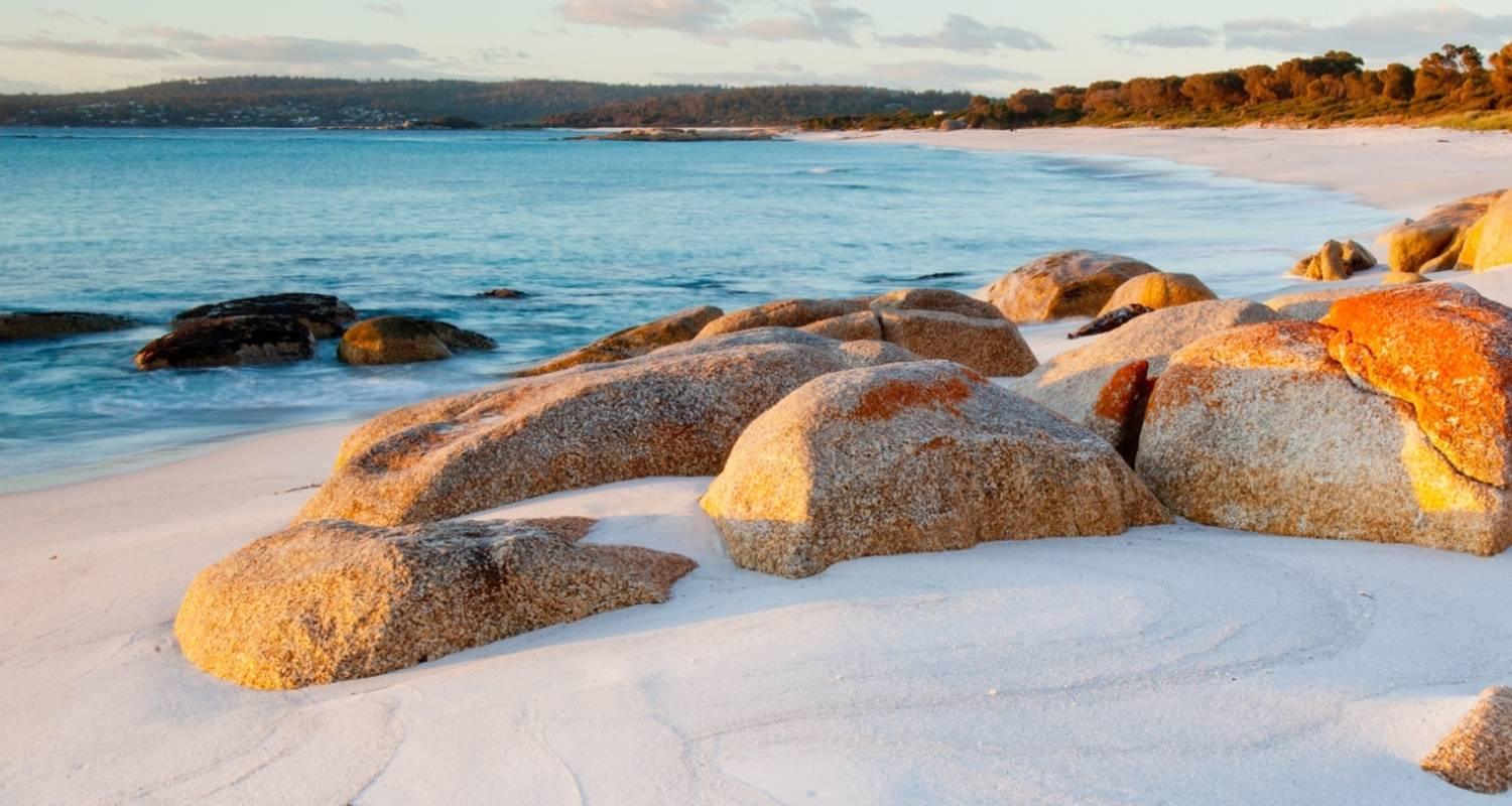 Tasmania's Footsteps And Trails - Trafalgar