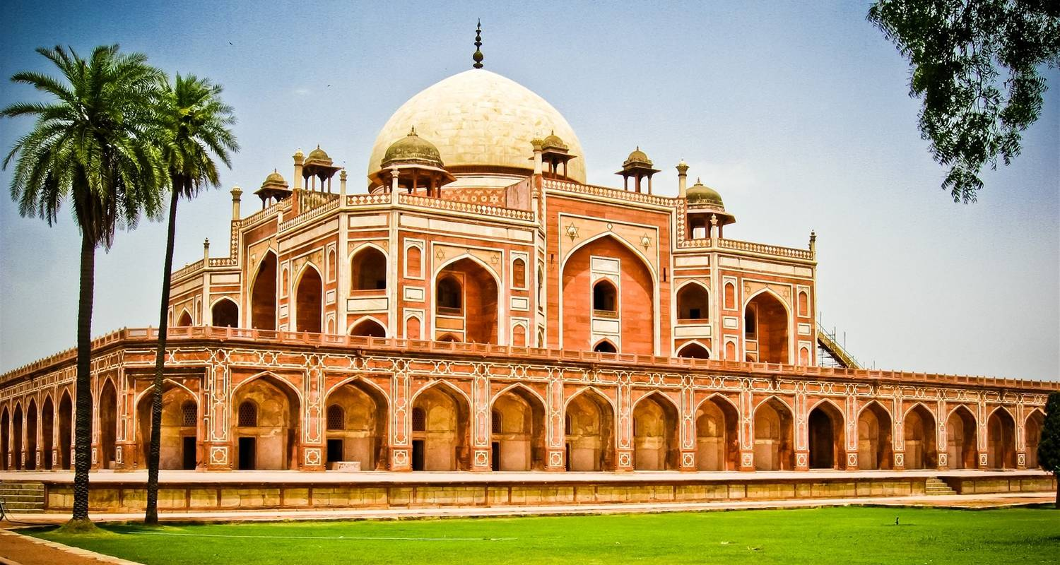 8 days India's Famous Golden triangle tour with Tigers Safari - Edshil Tours
