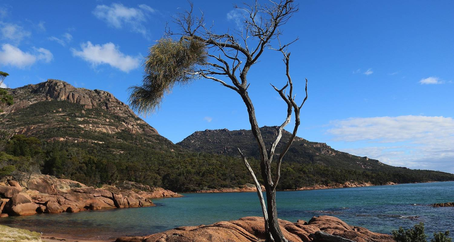 Freycinet Escape (2020) - APT