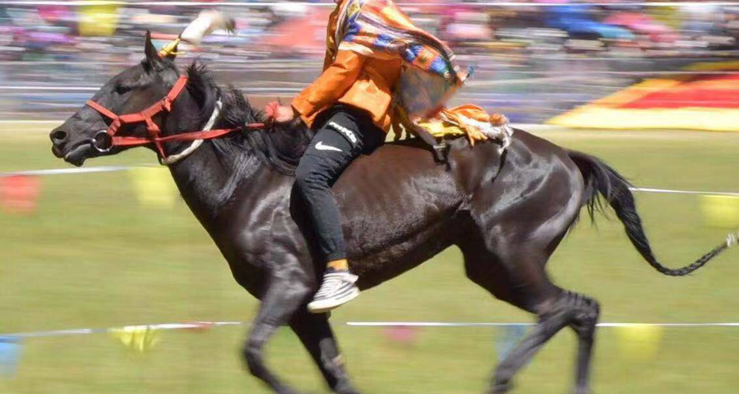 4 Days Naadam Festival Tour, July 10 to 13 - Agate Travel