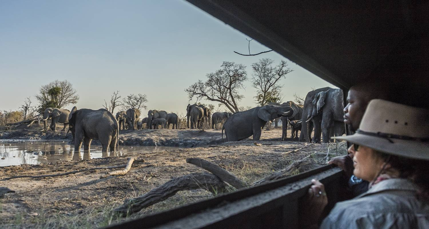 10-Day-The Elephant Trail Experience in Botswana  - Tanzania Kenya Safari