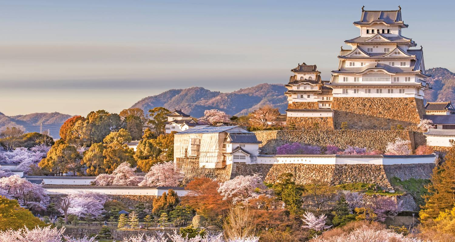 Japan im Fokus - Scenic Luxury Cruises & Tours