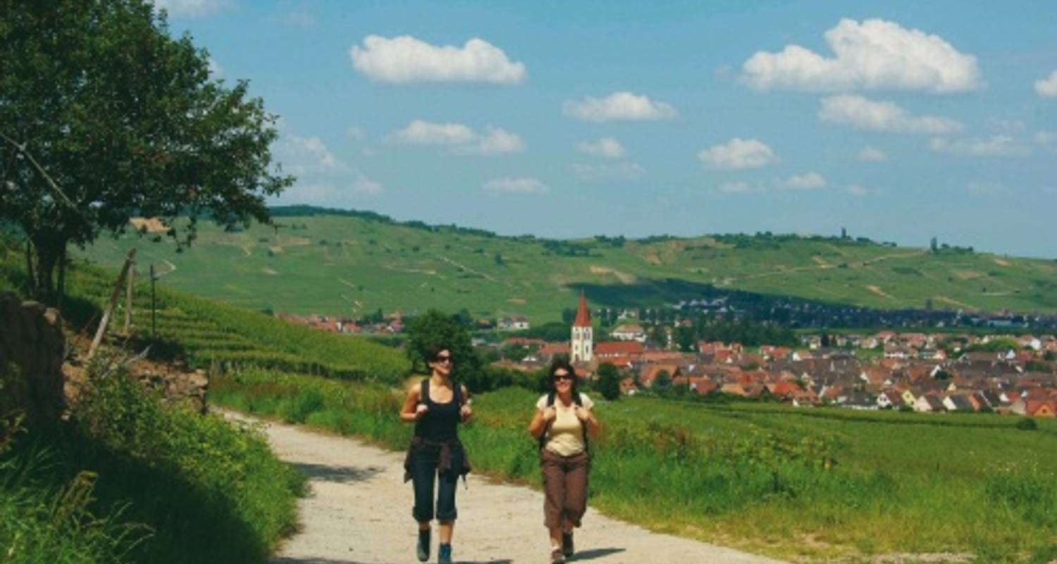 Alsace Mountains & Vineyards - UTracks