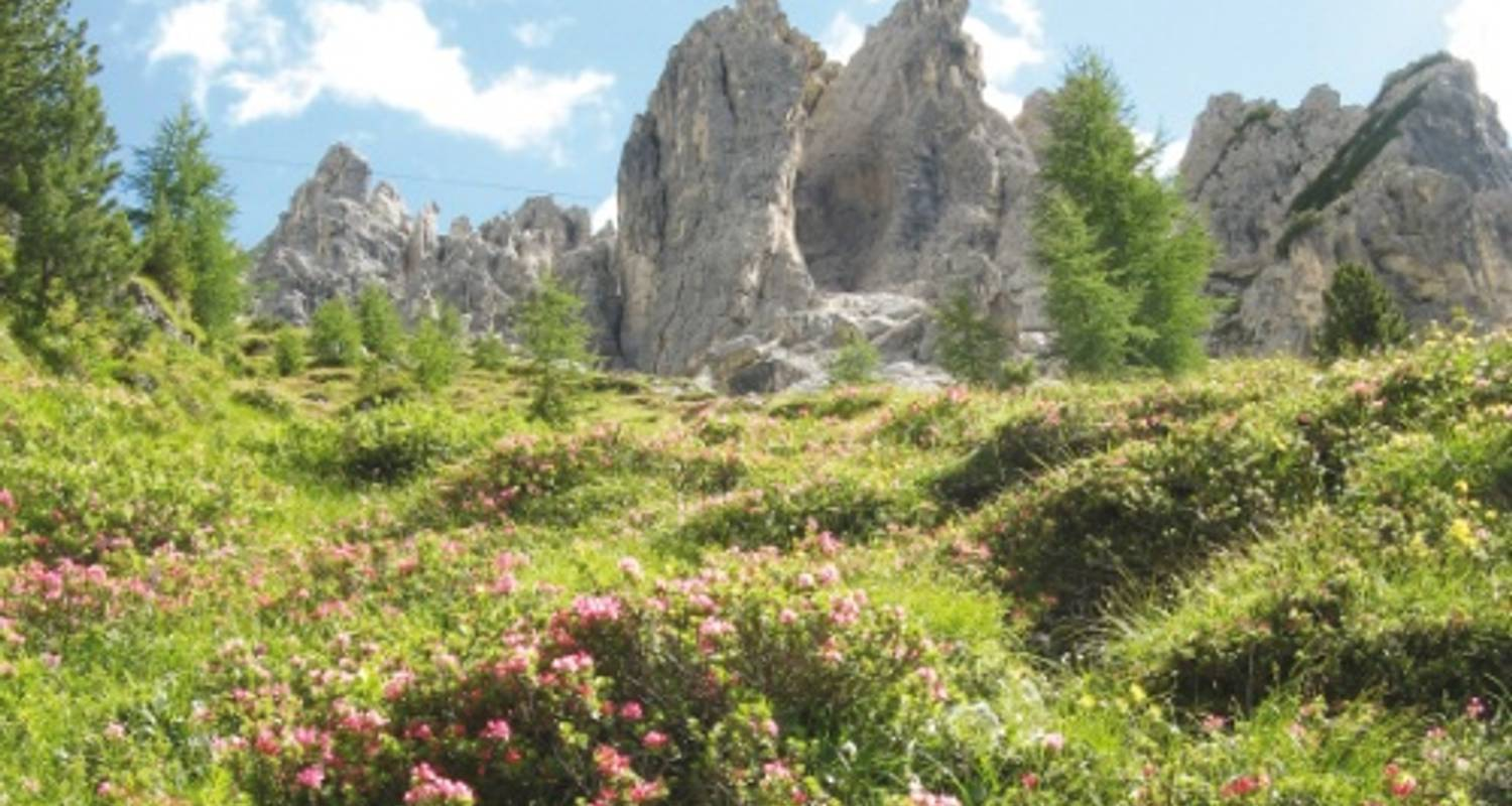 Dolomites Guided Walk - UTracks
