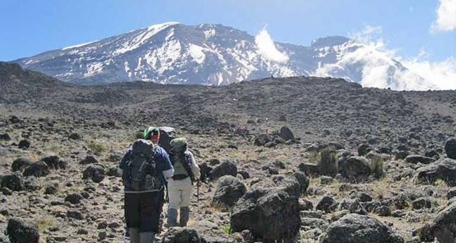 Kilimanjaro Climb Shira Route - Sed Adventures Tours and Safaris