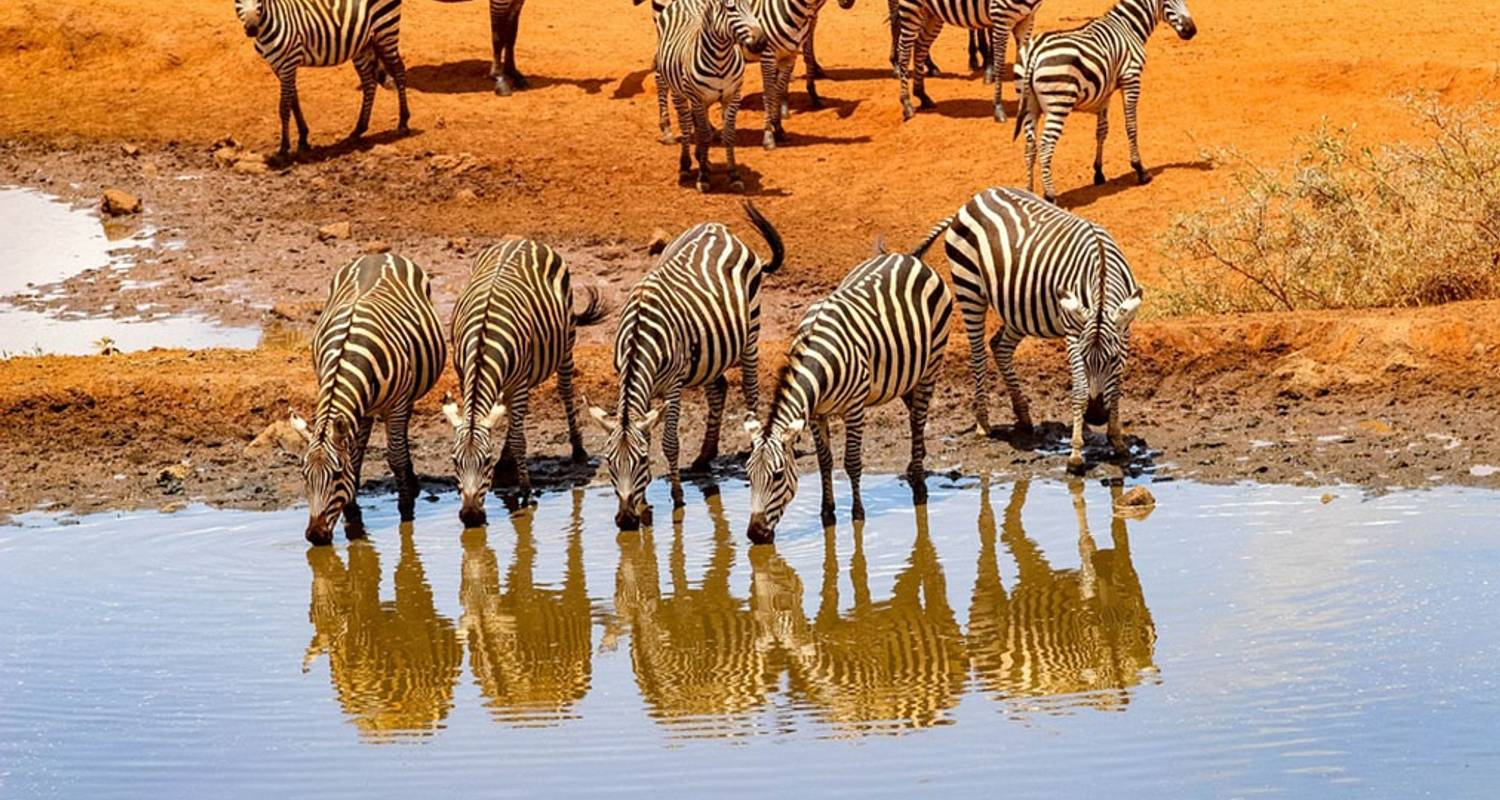 Highlights of Tanzania North 11 Days - Acacia Adventure Holidays