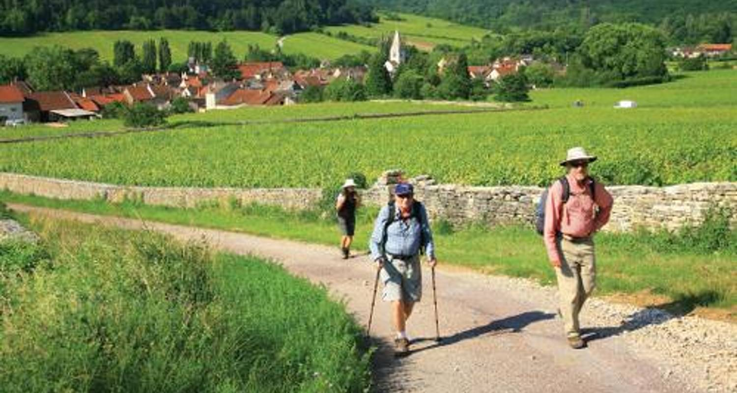 Burgundy Vineyard Trails - UTracks