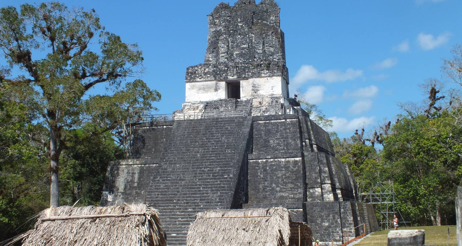 Tikal  Ruins and forest tour - Marvelus Travel