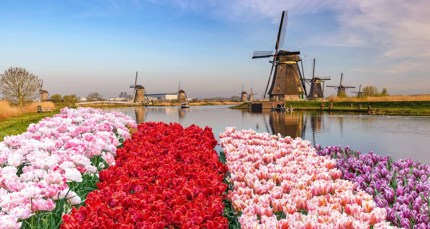 Cruise on the IJsselmeer, one of Holland's treasures (port-to-port cruise) - CroisiEurope River Cruises