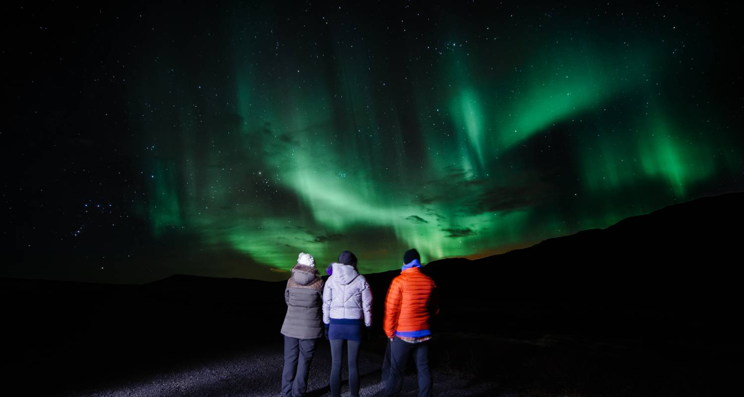 5 Day - Snaefellsnes, South Coast and Northern Lights - Arctic Adventures