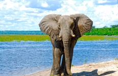 Exploring South Africa, Victoria Falls & Botswana  (Cape Town to Chobe) Tour