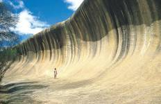 1 Day Wave Rock, York, Wildflowers and Aboriginal Culture Tour