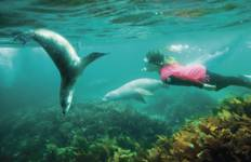 6 Day - Secrets of the Eyre Peninsula Tour