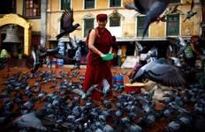 Kathmandu Shopping Tour (Full Day) Tour