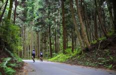 Japan Biking Tour