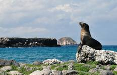 Ecuador and Galápagos Bike Tour Tour