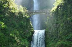 Columbia Gorge, Wine & Waterfalls: 1/2 Day Tour