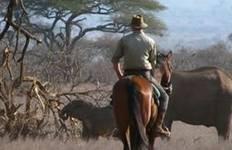 Tanzania: Serengeti, Singita Grumeti Reserve Luxury 6 Day Riding Safari Tour
