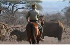 Kenya: Amboseli Riding Safari Tour
