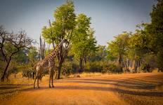 Namibia Nomad Tour