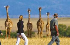 Victoria Falls & Kenyan Discovery (from Johannesburg to Johannesburg) Tour