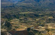 Colca Canyon and Arequipa Tour
