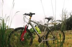 Angkor Wat Cycle Tour