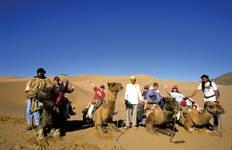 Camels & Kasbahs Tour