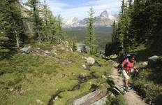 Canadian Rockies Wilderness Walks Tour