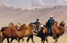 Highlights of the Gobi Tour
