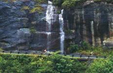 Hot Pools, Passes & Rainforests Tour