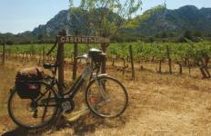 Provence Backroads Tour